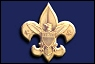 Boy Scout Troop 163