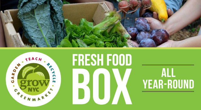 Fresh Food Box